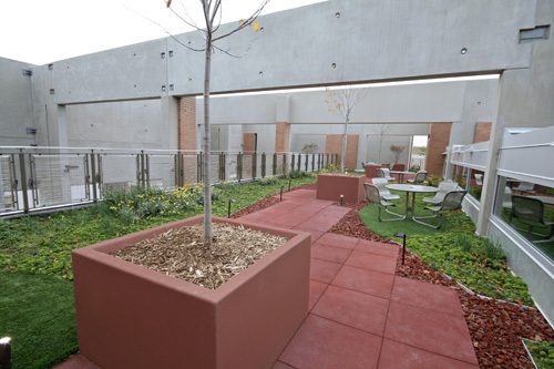 Green Building Practices - Garden